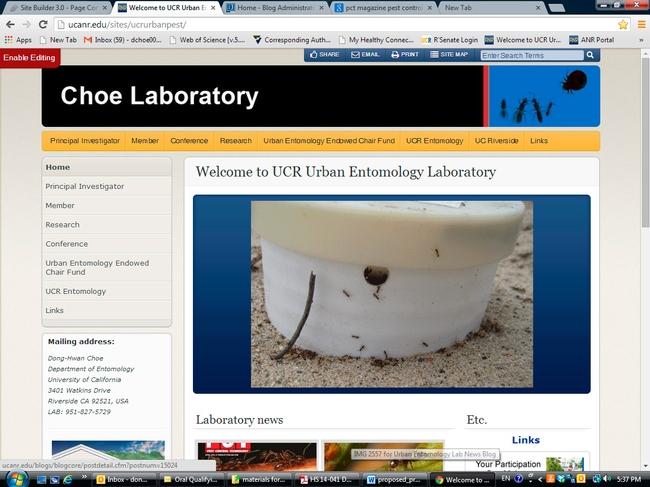 webpage version 2