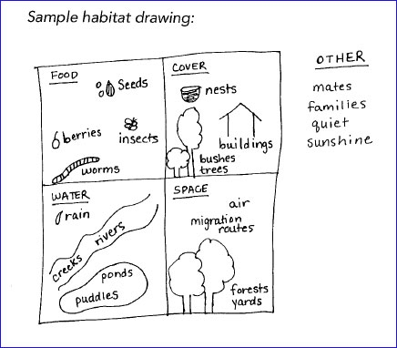 Drawing the components of habitats helps youth learn.