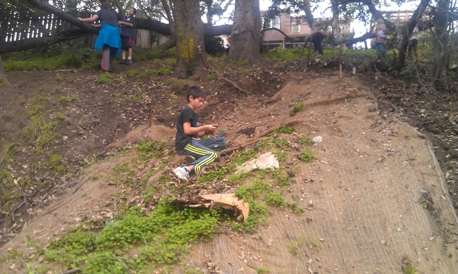4-H member Kai plants a native plant in an erosion mat.