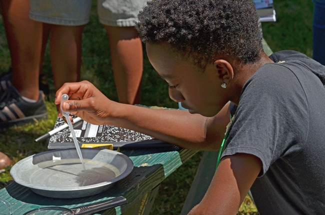 Campers are surprised by the small, living organisms found in the lake. (Photo: Marianne Bird)