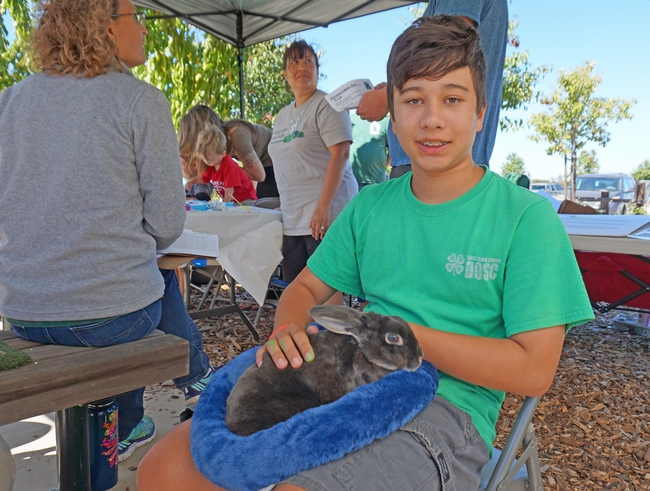 Coyote Crest 4-H member Wes Hann with his brother's rabbit at the harvest festival.