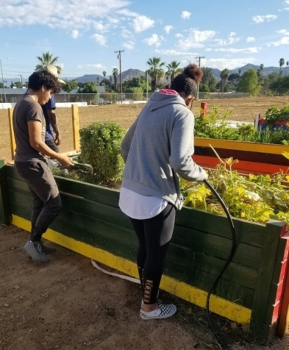 Volunteers working on a community vegetable garden in Riverside