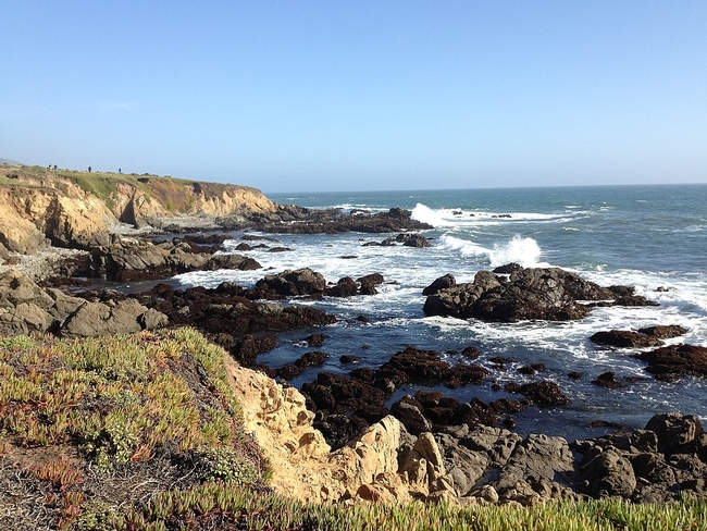 Bluffs and rocky shoreline in Cambria, Calif. (Photo: Peter D. Tillman CC BY-SA 3.0)