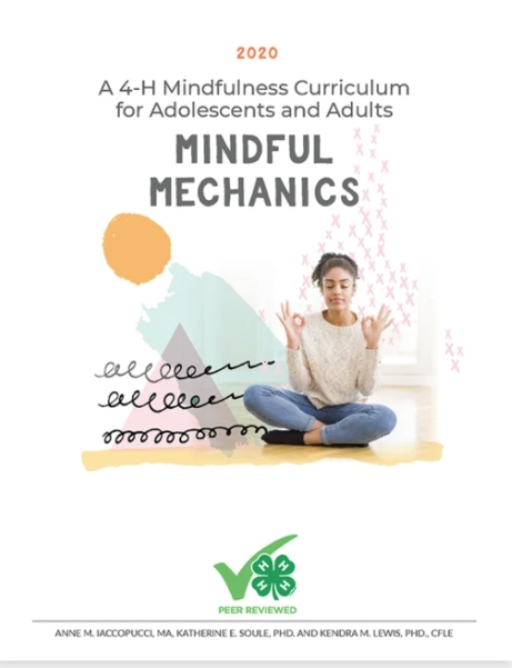 Mindful-Mechanics-curriculum