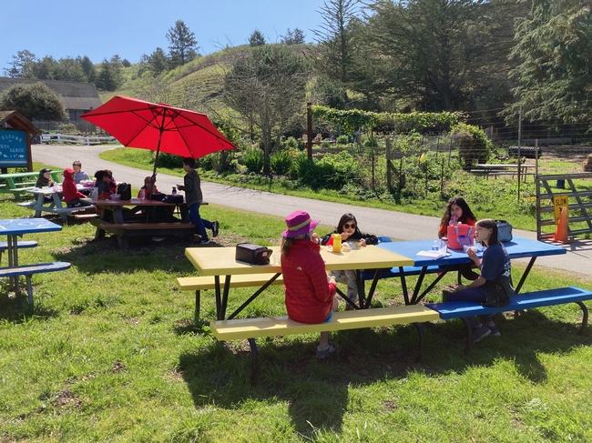 Children sit at blue and yellow picnic tables set on green grass with green hills in the background. A red umbrella shades one table. A garden is across the paved path.