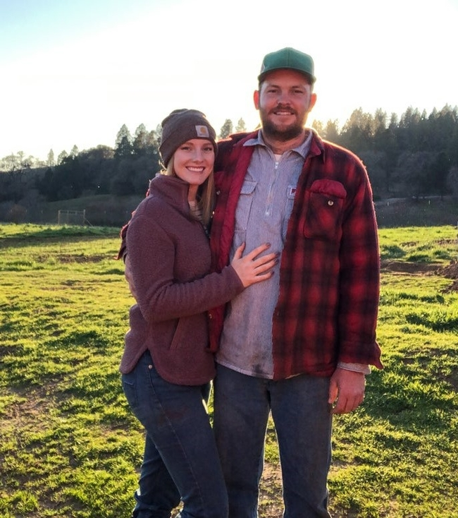 UC SAREP webinars help farmers, ranchers pivot to direct sales during pandemic