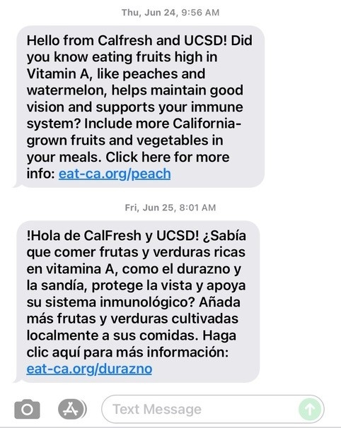 Sample texts from the pilot program