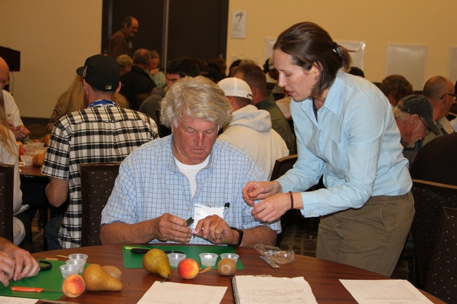 Instructor Brooke Jacobs during hands on flower and fruit dissection.