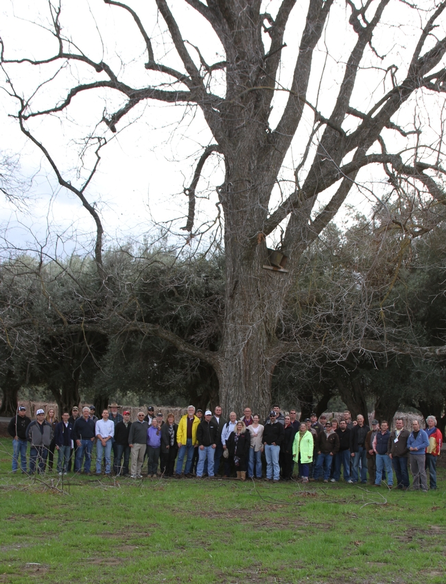 Principles of Fruit and Nut Tree Growth, Cropping and Management 2014 class picture