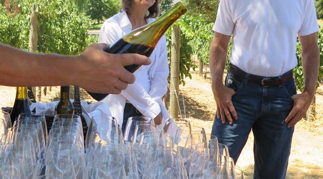 A hand pouring wine in a vineyard