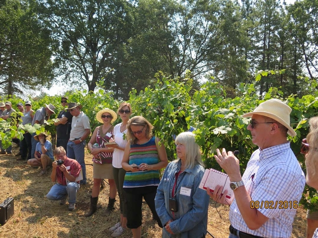 A group of people in a vineyard listening to a professor speak.
