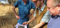 NRCS Soil scientist Andrew Brown (in cap) shows Tuolumne property owner Tim Moreno and Tuolumne Supervisor John Gray the soil map. for Foothill Fodder Blog