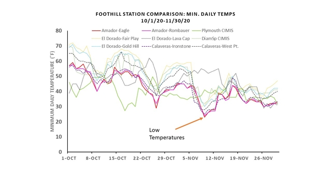 Comparison of minimum daily temperatures in fall 2020 from foothill PMI stations.