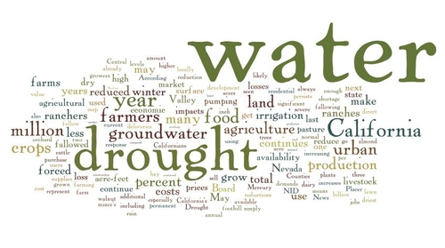 drought wordle