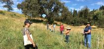 Small Animal Grazing School 2018 for Farming in the Foothills Blog