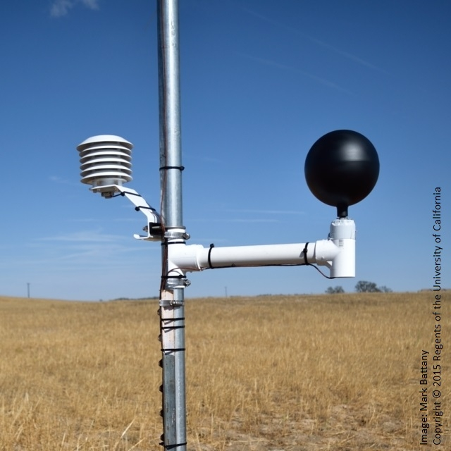 Figure 7. Black globe sensor adjacent to standard shielded air temperature sensor.