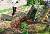 Mulch is a beautiful compliment to your landscape – not only is it aesthetic but it provides a valuable service to your soil.