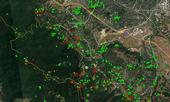 Google map shows results of the SOD blitzes available online at sodblitz.organd SODMAP.org. Green icons identify trees sampled that tested negative for SOD. Red icons were SOD-infected trees.