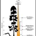 Lidar plane and pulse image
