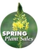 springplantsalesbutton 001 e-mail