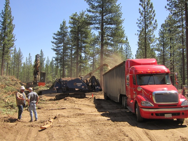 Slash piles are chipped and trucked to biomass facility.