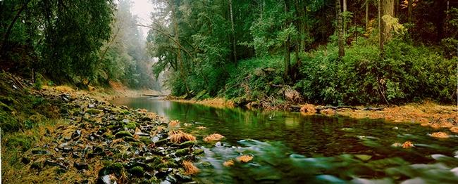 Landscape of the Eel River