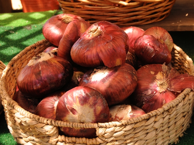 Red onions. Photo by Kathy Keatley Garvey