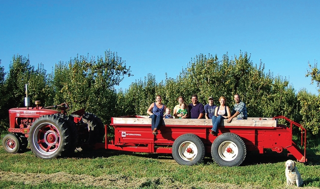 Visitors tour a farm in the Sacramento Delta region during pear harvest season.