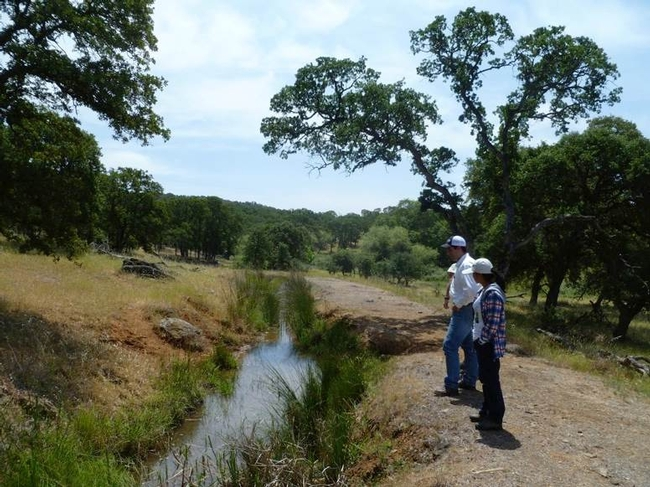 Canals at the UC ANR Sierra Foothill Research & Extension date back to the Gold Rush days.
