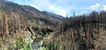 Rubicon River, El Dorado National Forest for Green Blog Blog