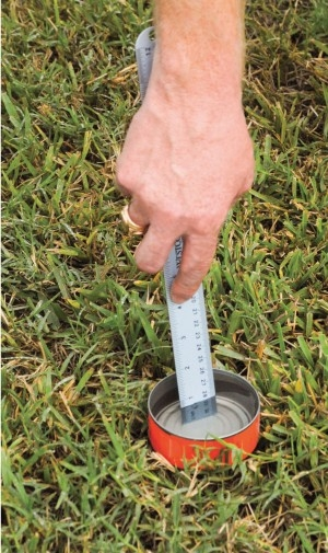 Empty tuna or cat food cans can be used to check sprinkler uniformity. (Photo: SFWMD)