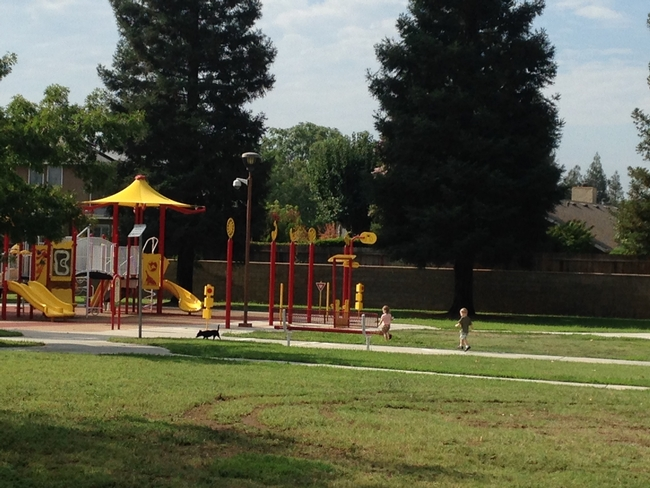 Children get exercise in suburban green space.