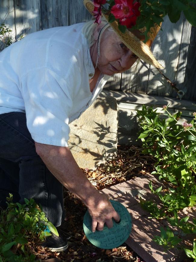 UC Master Gardener Mary Steele.