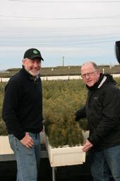 Dan Desmond, East Lake RCD director and UC ANR Cooperative Extension advisor emeritus (right), and Mark Egbert, El Dorado RCD manager, show ponderosa pine seedlings from this year's crop.