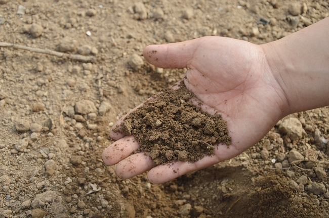 Soil is an often overlooked tool to fight the drought.