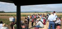 A researcher speaks at the 2015 Russell Field Day. (Photo: Agricultural Sustainability Institute) for Green Blog Blog