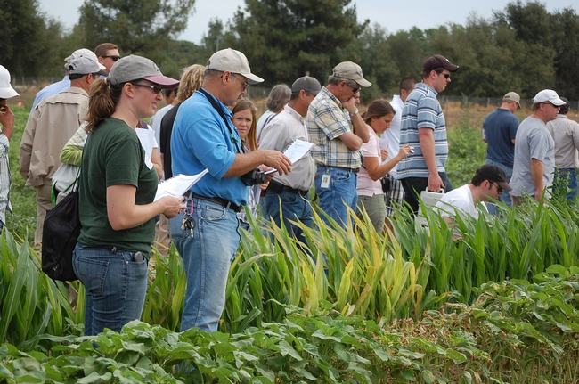 weed day and faculty 020