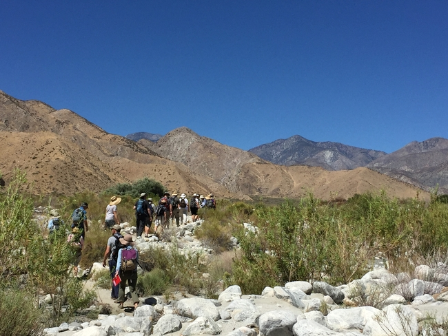 Naturalists explore Whitewater Preserve.