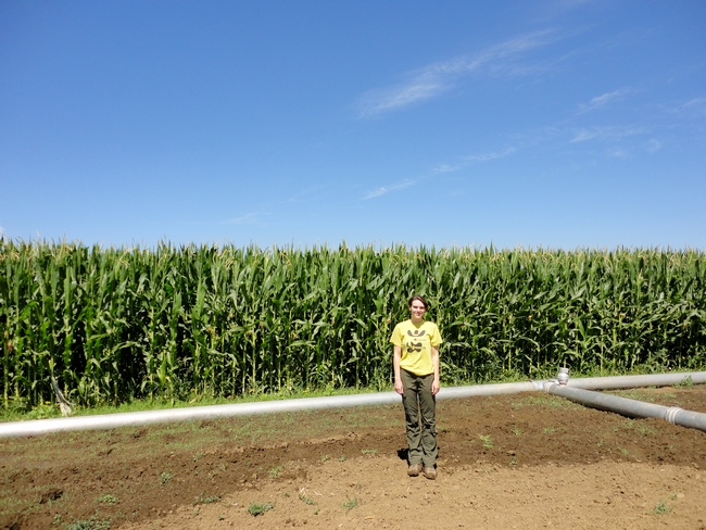 PhD candidate Deirdre Griffin stands in front of a corn field research plot at the Russell Ranch Sustainable Agriculture Facility