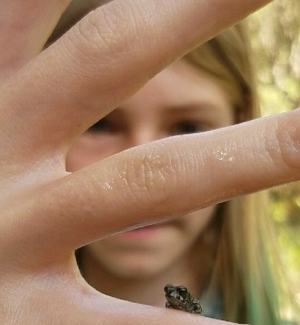 Mikayla McWilliams shows a tiny frog at the Sustainable You Summer Camp, UC Hopland Research and Extension Center.