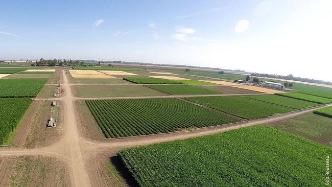 Long-term research at the Century Experiment shows how soil management and irrigation practices can influence the resilience of agricultural systems to climate change.
