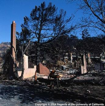 Houses likely burned from the inside out, says UCCE forest advisor