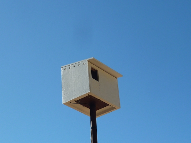 Photo of barn owl house on a pole