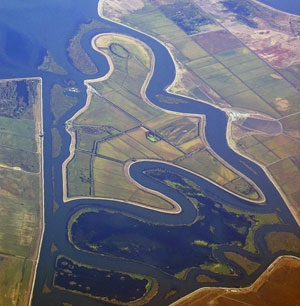 Farmland in the Sacramento-San Joaquin Delta. (Photo by Roy Tennant, freelargephotos.com)