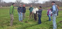 A group of organic farmers, shown above, are working with UC researchers to minimize tillage and optimize soil characteristics on their farms. for Green Blog Blog