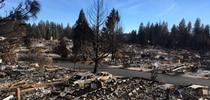 Remnants of a burned trailer park in Paradise after the Camp Fire. for Green Blog Blog
