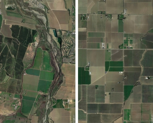 More habitat in agricultural landscapes (such as riparian habitat along Cache Creek, left) brought in more beneficial birds to farms compared to less habitat (right). Google Earth image.