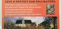 pollinator poster for Green Blog Blog