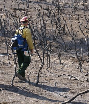 UCCE offers training for landowners interested in using prescribed fire