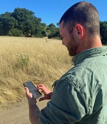 New mobile app identifies hazardous trees for public safety